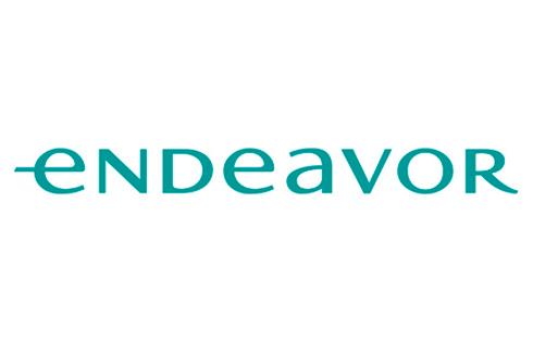 Endeavor Brasil