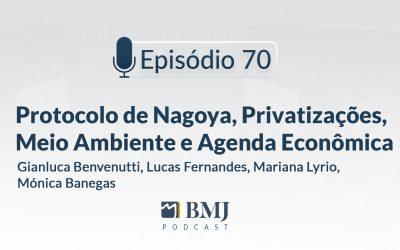 Protocolo de Nagoya, Privatizações, Meio Ambiente e Agenda Econômica